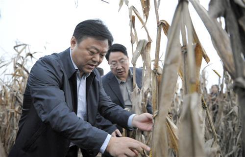 陈星深入平舆汝南上蔡调研指导三秋农业生产