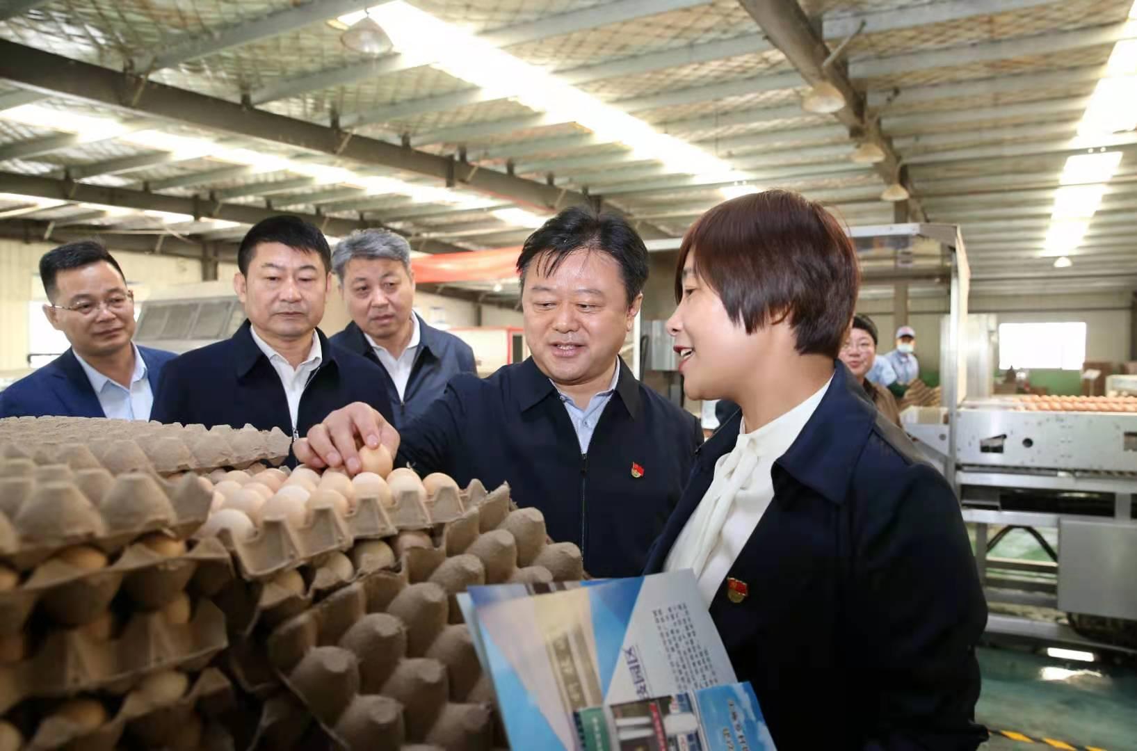 陈星到西平县上蔡县调研乡村振兴和农业生产工作